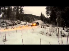 Rally on the Limit 2014