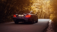 CLS WALD