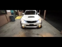 Thai's Sti | LowerStandards